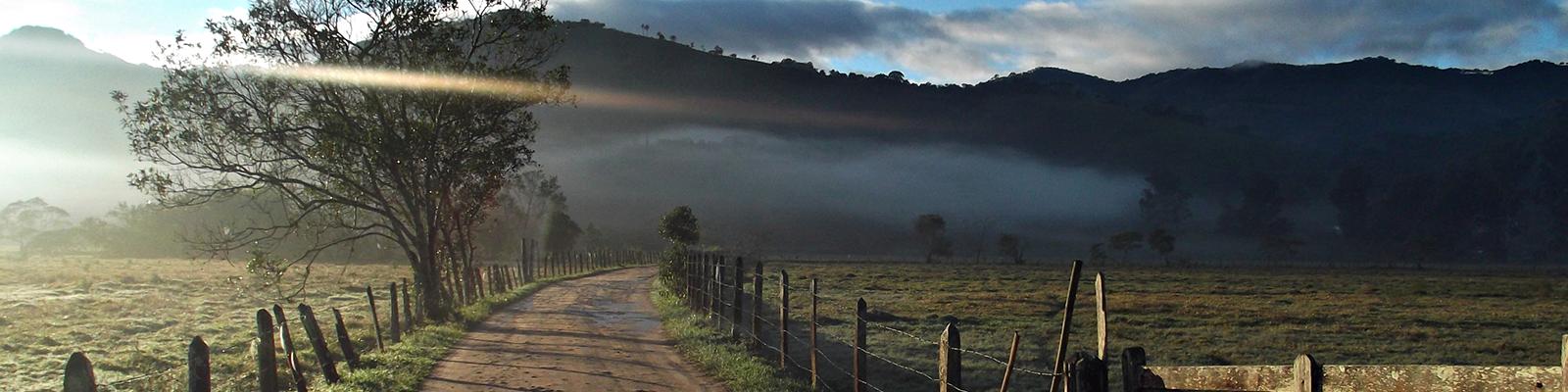 Foto do 1º Concurso de Fotografia- PPGADR - Seu Olhar Sobre o Ambiente. Caminho da roça. Ednilson M. de Lima e Silva.  Estrada de terra batida ao lado cercas em madeira e arame, uma porteira do lado direito e algumas árvores do lado esquerdo, ao fundo névoa e um morro.